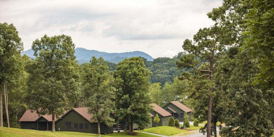 Trees and brown cabins